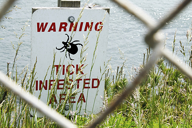 warning tick infested area