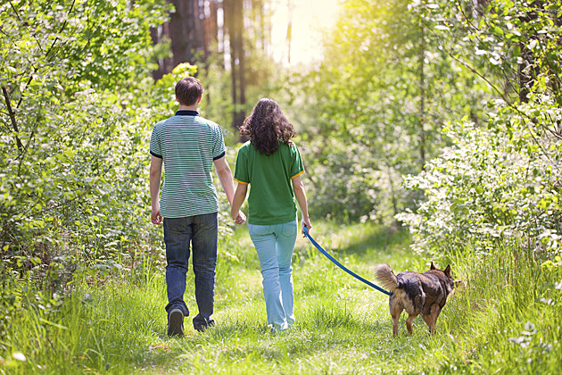 couple walking dog in woods